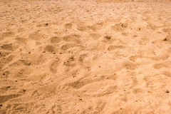 Yellow sand texture. Stock Photography