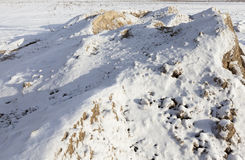 Yellow sand under the snow Royalty Free Stock Image
