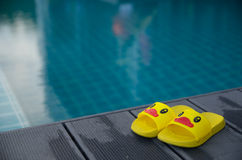 Yellow sandals duckling on table beside the swimming pool Stock Image
