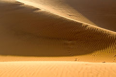 Yellow sandy wavy dunes in desert at daytime. Nobody. Nature landscape Royalty Free Stock Photos