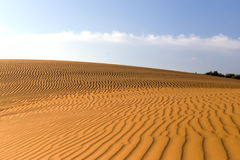 Yellow sandy wavy dunes in desert at daytime. Nobody. Nature landscape Royalty Free Stock Photo