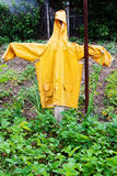 Yellow scarecrow Royalty Free Stock Photography