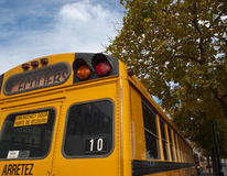 Free Yellow School Bus Royalty Free Stock Images - 11561309