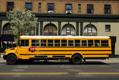 Yellow School Bus. In New York City stock photography