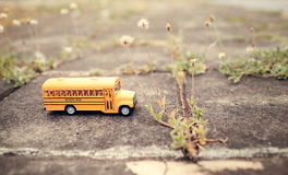 Yellow school bus toy model on country road. Stock Images