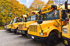 Yellow school buses Royalty Free Stock Photos