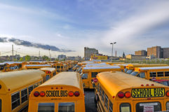 Yellow school buses against the dark blue sky Stock Photos