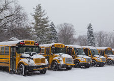 Yellow School Buses Parked in the Snow Stock Photos