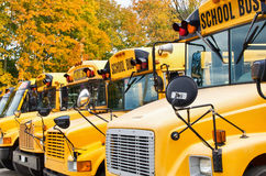 Yellow school buses Royalty Free Stock Images