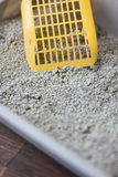 Yellow scoop standing on the litter sand on the litterbox. Stock Photo
