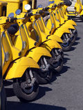 Yellow Scooters. A long line of yellow scooter Royalty Free Stock Photo