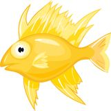 Yellow sea fish Stock Image