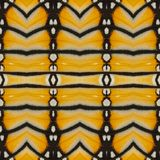 Yellow seamless pattern made from colorful butterfly wing for ba Royalty Free Stock Images
