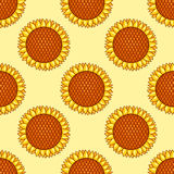 Yellow seamless pattern with sunflowers Stock Photography