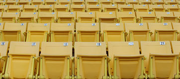 Yellow seats on the grandstand Royalty Free Stock Photo