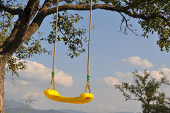 Yellow seing. A yellow swing hanging on a tree  on a beautiful sunny day,blue sky Royalty Free Stock Image