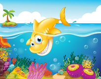 A yellow shark diving into the sea Royalty Free Stock Photography