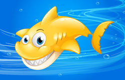 A yellow shark under the water Stock Image