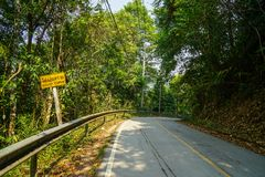 Yellow sharp curve warning road sign along local asphalt road through natural green forest mountain. Chiangmai, Thailand stock photo