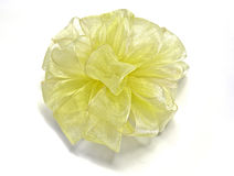 Yellow sheer bow Royalty Free Stock Images