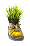 Yellow shoes. Yellow boots with grass on white background Stock Photo