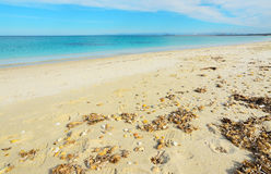 Yellow shore and blue sea in Fiume Santo Royalty Free Stock Photo