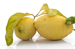 Yellow sicilian fresh lemon Stock Photos