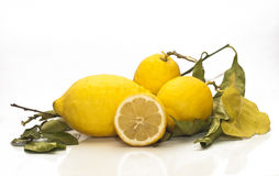 Yellow sicilian fresh lemons Stock Image