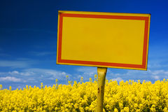Yellow sign. On rape field in spring Stock Photography