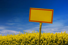 Yellow sign. On rape field in spring Royalty Free Stock Images