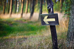 Yellow sign in the forest Stock Photos