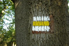 Yellow sign hiking trails. On the tree royalty free stock photos