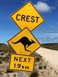 Kangaroo island,Australia Royalty Free Stock Photography
