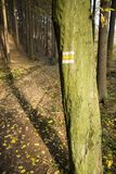 Yellow sign on a tree Stock Photography