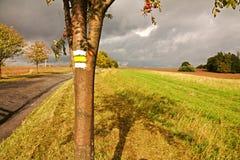 Yellow signposting Stock Photos
