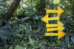 Yellow Signs in the Forest Stock Photos