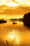 Yellow silhouette of boat and birds at sunset. Over the river Eske in Donegal town county Donegal Ireland Stock Photos