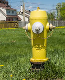 Yellow and silver Fire Hydrant Stock Photo