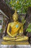 Yellow sitting Budha image. Big Yellow sitting Budha image Stock Photos