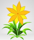 Yellow six petal blossom flower  Stock Images