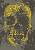 Yellow skull Stock Images