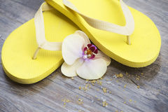 Yellow slippers Stock Images