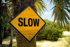 Yellow Slow Sign. On the palm tree Stock Photography
