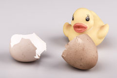 Yellow small plastic duck with egg isolated Stock Photo