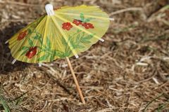 Yellow small umbrella standing on the grass Stock Images