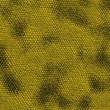 Yellow snake skin stock image
