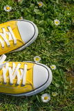 Yellow sneakers in a dasiy field. First person view stock photos