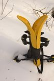 Yellow snowshoes Stock Photography