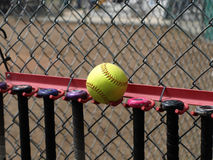 Yellow Softball and Bats royalty free stock images