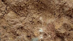 Yellow soil with cracks stock footage